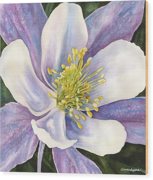 Columbine Closeup Wood Print