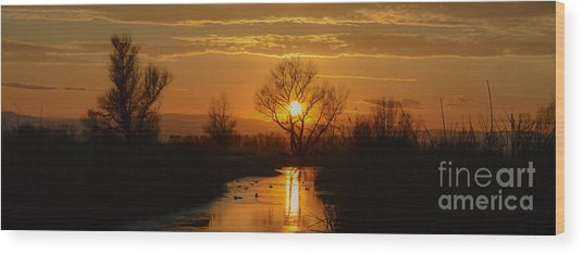 Colusa Wildlife Refuge Sunset Wood Print