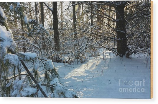 Come Warmth Of Winter's Sun Wood Print