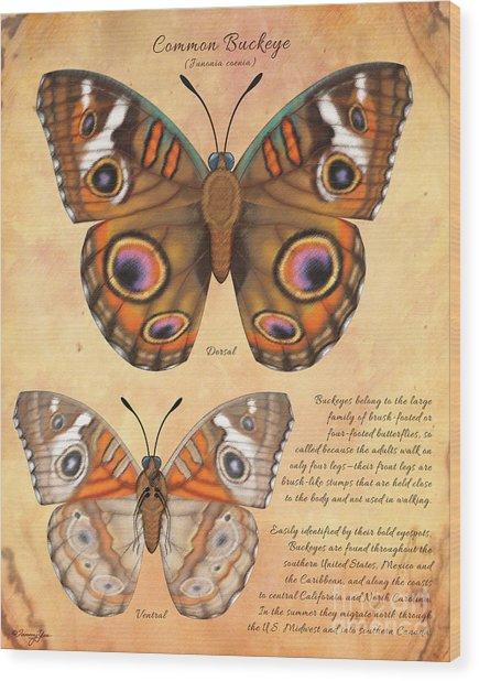 Common Buckeye Butterfly  Wood Print by Tammy Yee