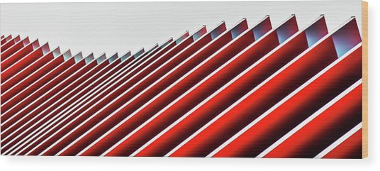 Concertina Wall II Wood Print by Gilbert Claes