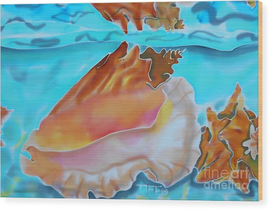 Conch Shallows Wood Print