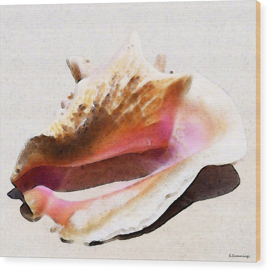 Conch Shell By Sharon Cummings Wood Print by William Patrick
