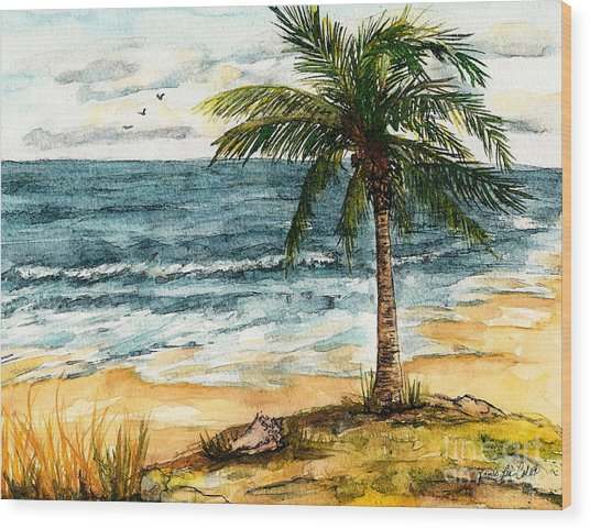 Conch Shell In The Shade Wood Print
