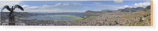 Condor Hill, Puno, Peru Wood Print