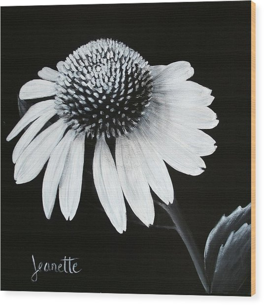 Coneflower Wood Print