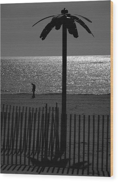 Coney Island 1 Wood Print