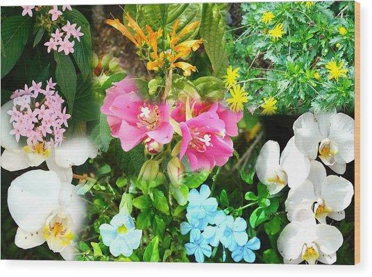 Confluent Flowers 12 Wood Print