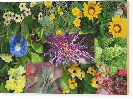 Confluent Flowers 3 Wood Print