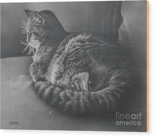 Contentment Wood Print