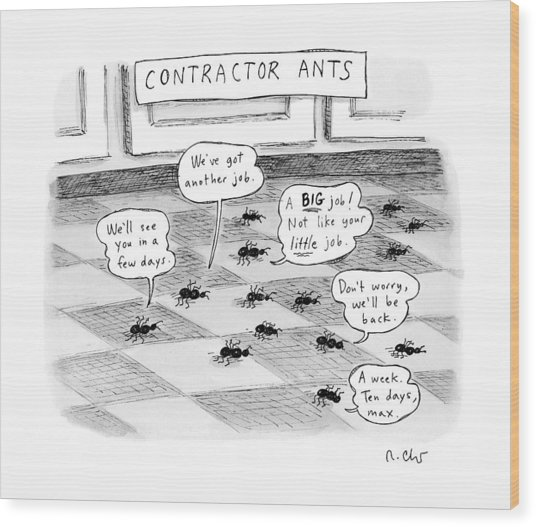 Contractor Ants Are Leaving A House. Ants' Speech Wood Print