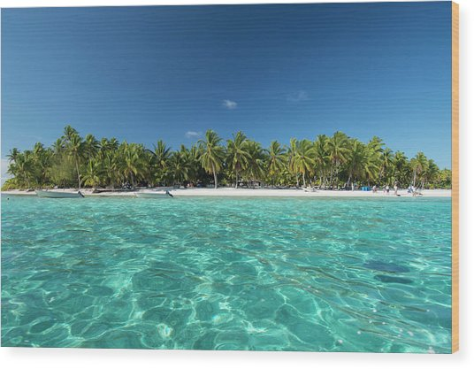 Cook Islands Palmerston Island Wood Print by Cindy Miller Hopkins