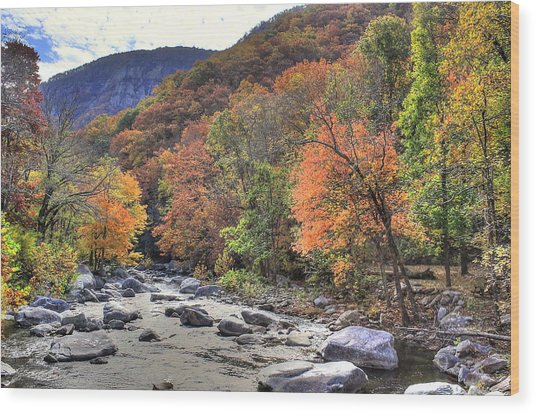 Cool Mountain Stream Wood Print