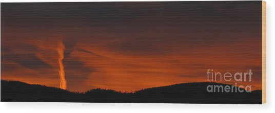 Cool Night Wood Print by Greg Patzer