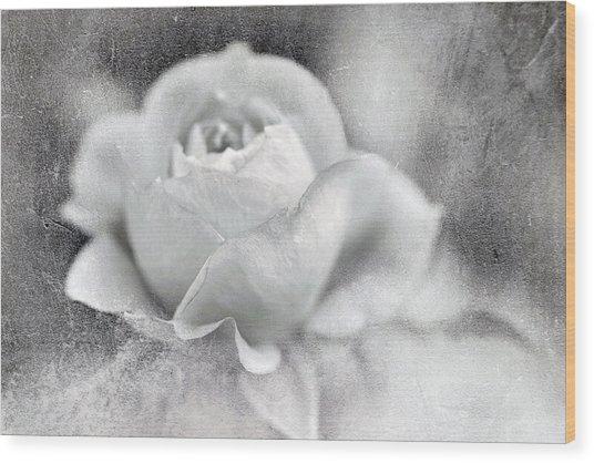 Cool Rose Wood Print