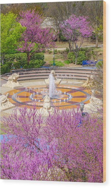 Coolidge Park Fountain In Spring Wood Print