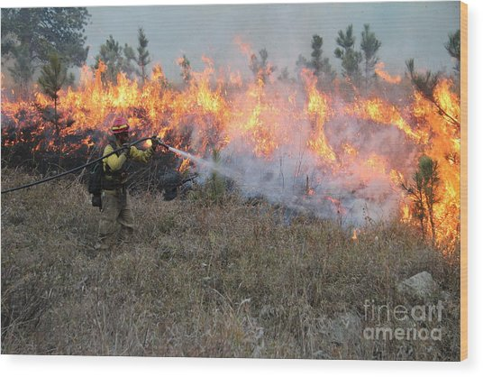 Cooling Down The Norbeck Prescribed Fire. Wood Print