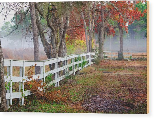 Coosaw Horse Fence Wood Print