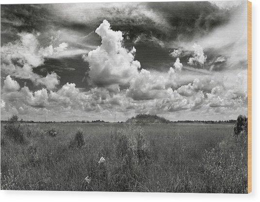 Copeland Prairie Revisited Wood Print
