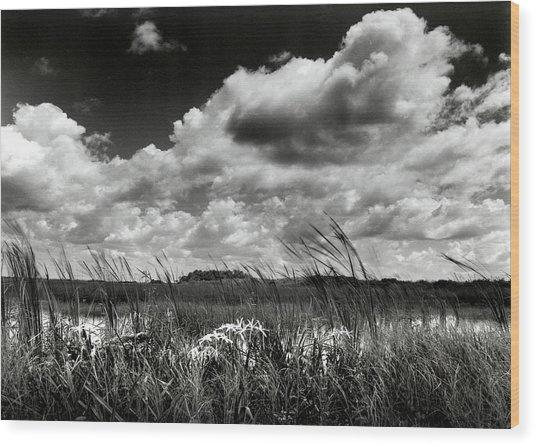 Copeland Prairie Wood Print