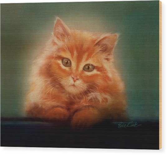 Copper-colored Kitty Wood Print
