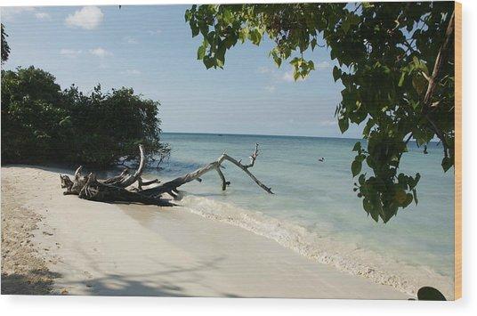 Coral Beach Wood Print by Olaf Christian