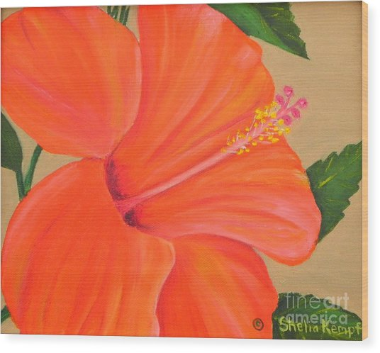Coral Delight - Hibiscus Flower Wood Print