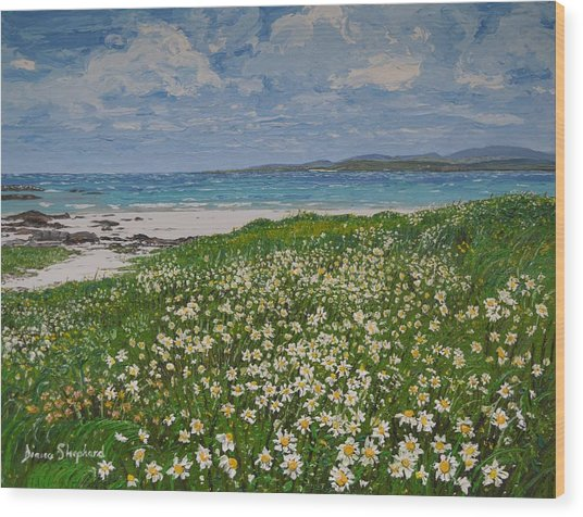 Coral Strand On A Windy Day Connemara Wood Print