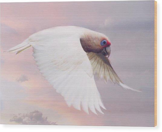 Corella In Flight Wood Print