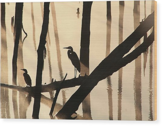 Cormorant And The Heron Wood Print