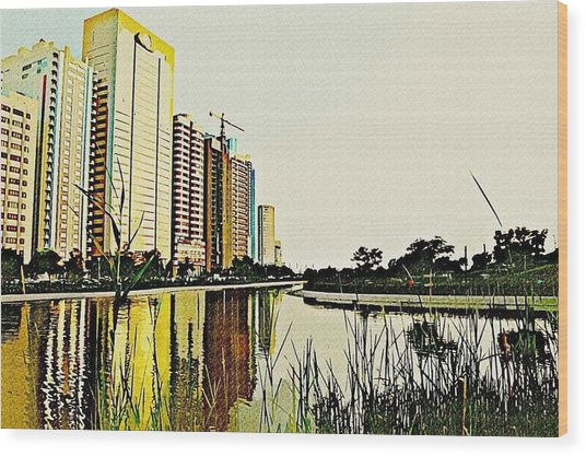 Corniche Gardens Wood Print by Peter Waters