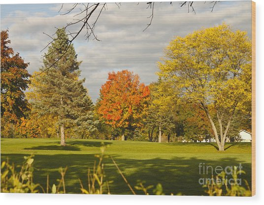 Corning Fall Foliage 5 Wood Print