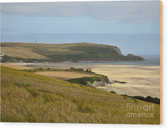 Cornish Coast Wood Print