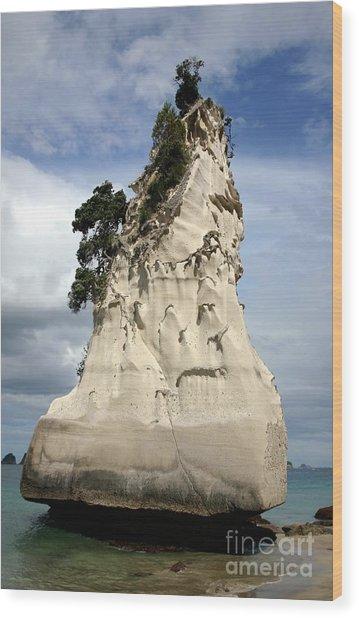 Coromandel Rock Wood Print