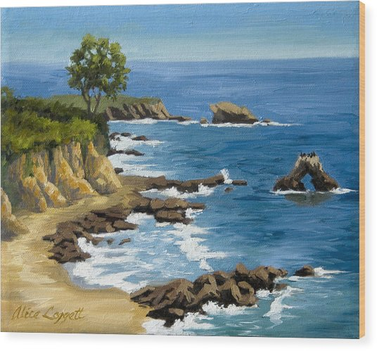 Corona Del Mar California Wood Print