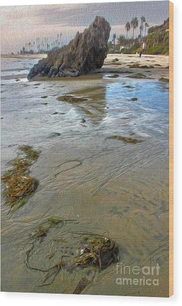 Corona Del Mar Coast Wood Print