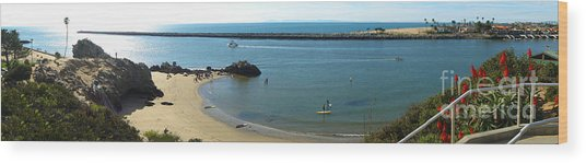 Corona Del Mar State Beach Wood Print