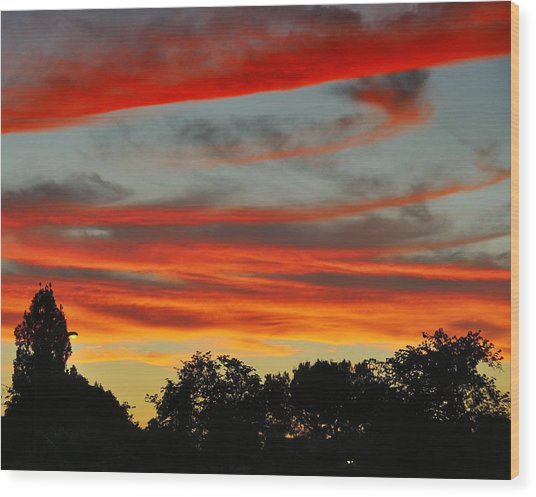 Corona Sunset Wood Print by Jim Robinson