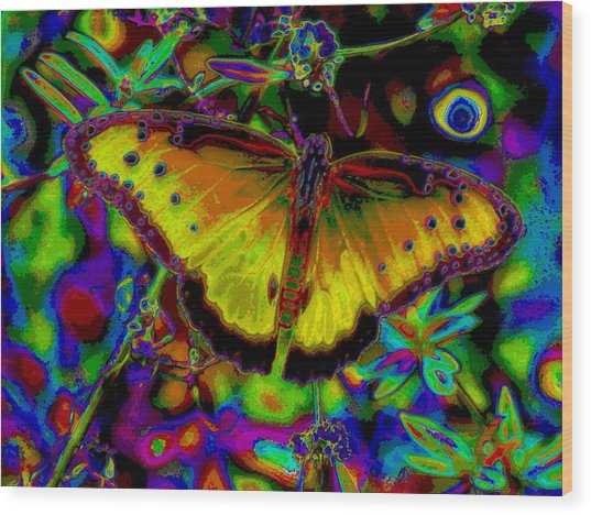 Cosmic Butterfly Wood Print by Rebecca Flaig