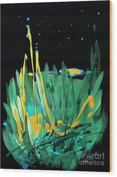 Cosmic Island Wood Print