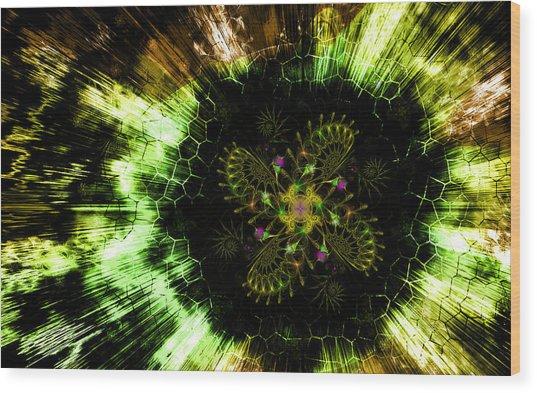 Wood Print featuring the digital art Cosmic Solar Flower Fern Flare by Shawn Dall