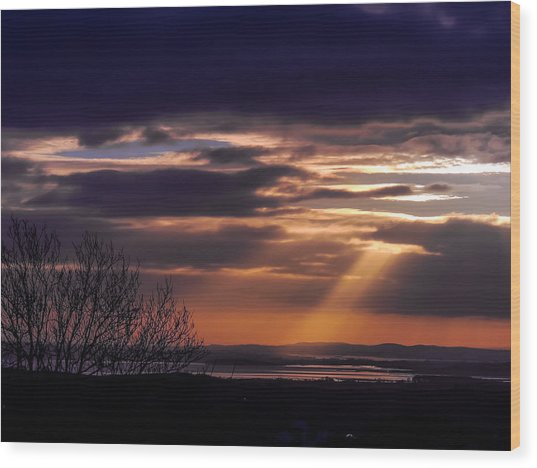 Cosmic Spotlight On Shannon Airport Wood Print