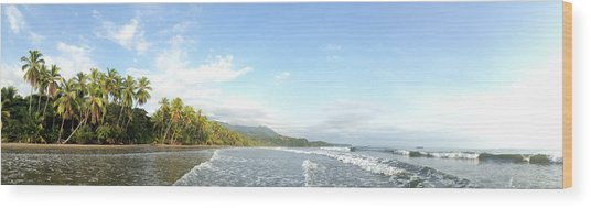 Costa Rica Magic Wood Print by Tropigallery -