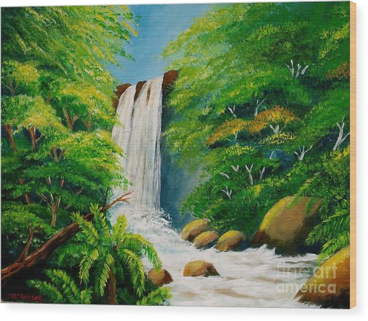 Costa Rica Waterfall Wood Print