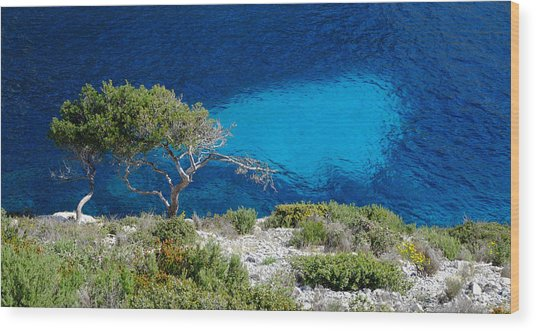 Pine Trees At Azure Waters Wood Print