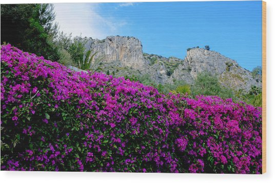 Cote D'azur Purple And Blue Wood Print