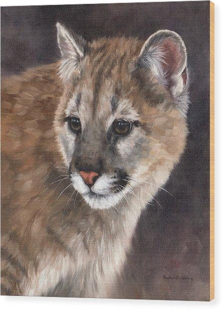 Cougar Cub Painting Wood Print
