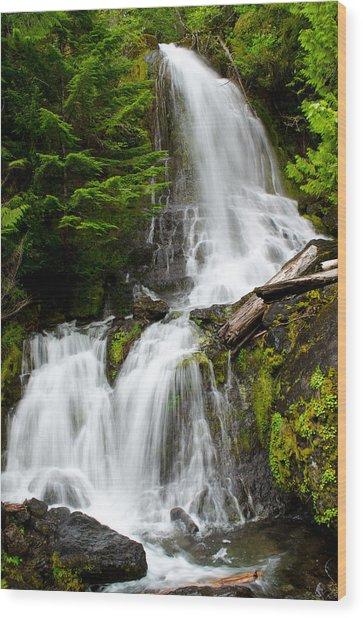 Cougar Falls Wood Print