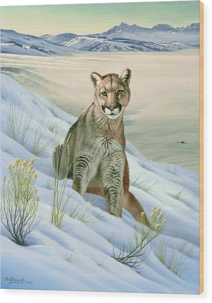 'cougar In Snow' Wood Print