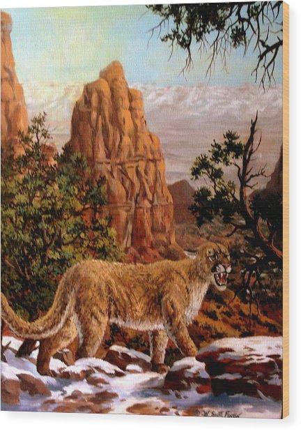 Cougar Wood Print by W  Scott Fenton